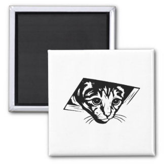 Ceiling Cat 2 Inch Square Magnet