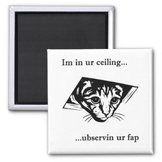 Ceiling Cat ubservin u... 2 Inch Square Magnet