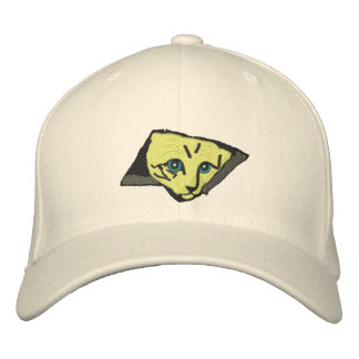Ceiling Cats Embroidered Hat