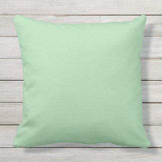 Celadon Green Solid Outdoor Throw Pillow 20x20