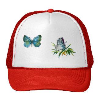Celastrina argiolus (male) trucker hat