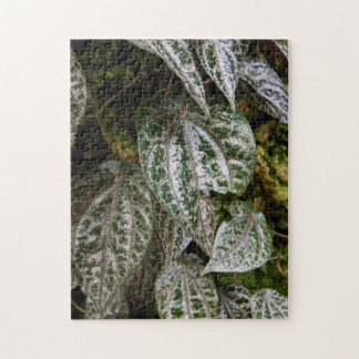Celebes Pepper 10x14 Photo Puzzle