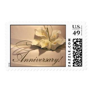 Celebración del aniversario envio