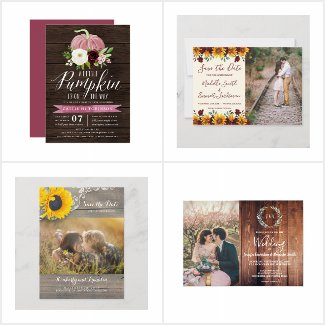 Celebrant Collection - Weddings & More