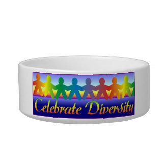 Celebrate Diversity Bowl