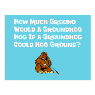 Celebrate Groundhog Day Postcard