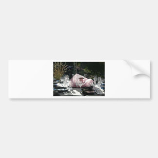 Celebrate in pink bumper sticker