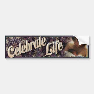 Celebrate Life-2 Bumper Sticker Car Bumper Sticker
