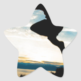 celebrate life star sticker