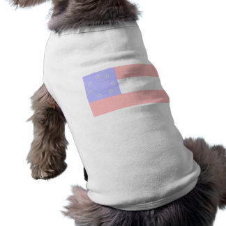 Celebrate Patriotism: 1783 & 1861 Shirt