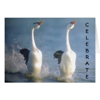 """""""CELEBRATE"""" TROPICAL GEESE SYTLE CONGRATS GREETING CARD"""