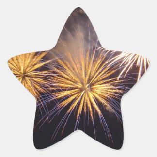 Celebration firework star sticker