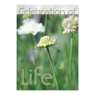 Celebration of Life 1 Floral Landscape Card