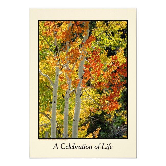 Celebration of Life Invitation, Three Aspens