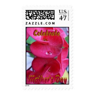 Celebre el día de madre - modificado para sellos postales