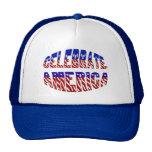 Celebre el gorra de la fuente #1 de la bandera de