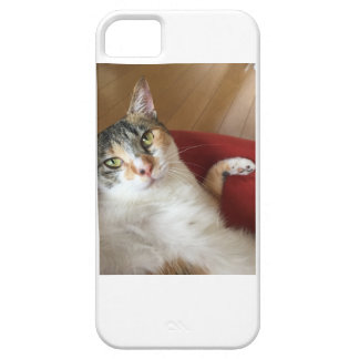 Celebrity Chomi iPhone SE/5/5s Case