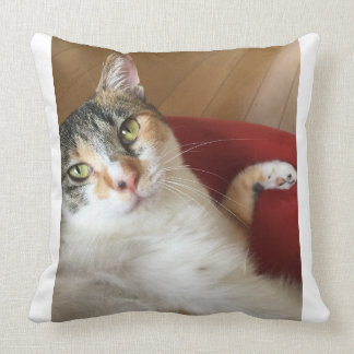 Celebrity Chomi Throw Pillow