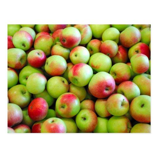 Celemines de manzanas tarjetas postales