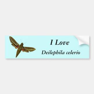 Celerio de Deilephila Pegatina Para Auto