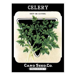 Celery Seed Packet Green Black Vegetable Garden Postcard
