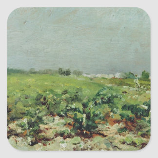 Celeyran, View of the Vineyard, 1880 Square Sticker