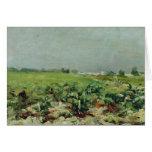 Celeyran, vista del viñedo, 1880 tarjeta de felicitación