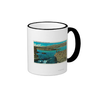 Celilo cae en el río Columbia Tazas De Café