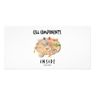 Cell Components Inside Picture Card