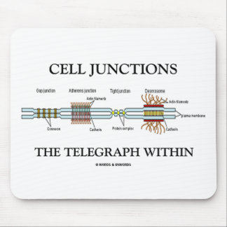 Cell Junctions The Telegraph Within Mousepads