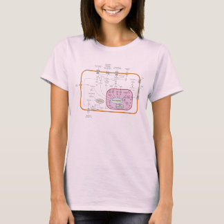 Cell Signal Transduction Pathways Diagram T-Shirt