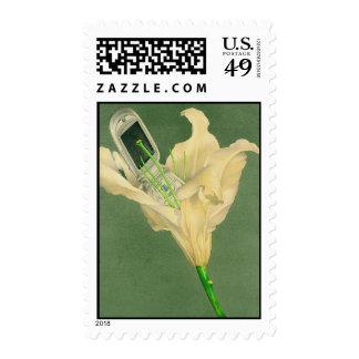 Cellflower Postage Stamp
