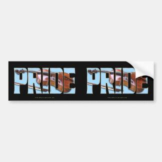 Cello PRIDE Bumper Stickers