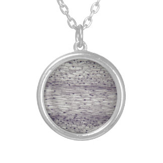 Cells of a root under the microscope. silver plated necklace