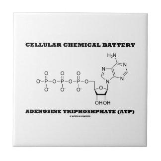 Cellular Chemical Battery Adenosine Triphosphate Tile