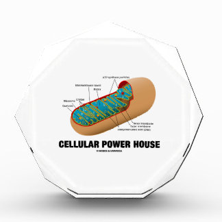 Cellular Power House Mitochondrion Awards
