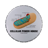 Cellular Power House (Mitochondrion) Candy Tin