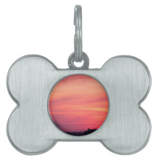 Cellular tower at sunset pet tag