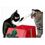 Celos del navidad tarjeta postal