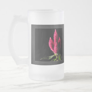 Celosia Caracas. Cockscombs. Pink Flowers. Frosted Glass Beer Mug