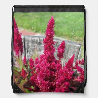 Celosia Red Rustic Fence Garden Drawstring Backpacks