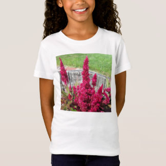 Celosia Red Rustic Fence Garden T-Shirt