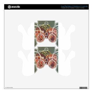Celtic horse- zodiac symbol PS3 controller decals