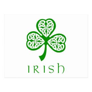 Celtic Knot Shamrock over Irish text Postcard