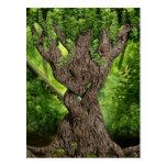 Celtic Knot Tree Postcard