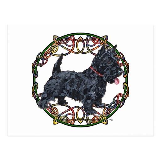 Celtic Knotwork de Terrier del escocés Tarjetas Postales