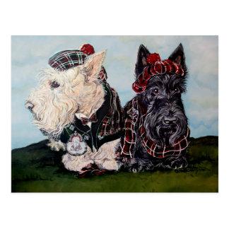 Celtic Scottish Terriers Postcard