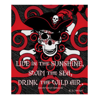 Celtic Spiral Pirate Poster
