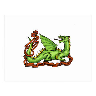 Celtic style dragon and rope.png post card