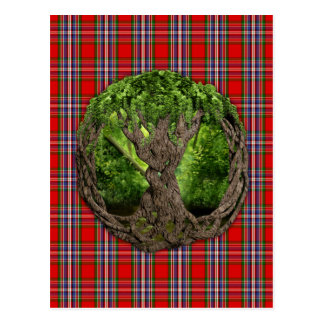 Celtic Tree Of Life And Clan MacFarlane Tartan Postcard